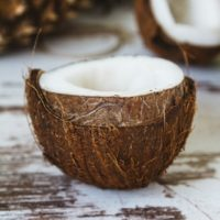coconut-2592257_1920 (1)